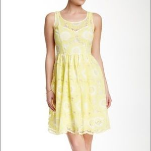 TRACY REESE Stella Scallop Lace Flare Dress  NWOT